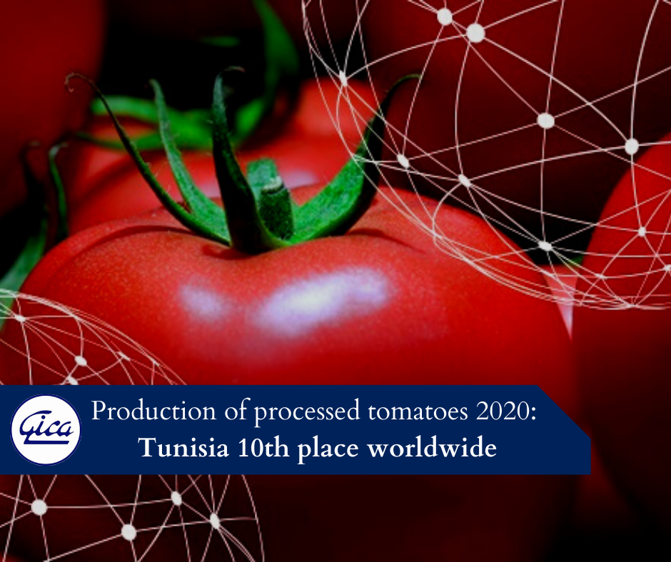 Production of processed tomatoes 2020: Tunisia 10th place worldwide